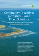 Community Incentives for Nature-Based Flood Solutions