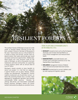 A 4-page fact sheet describing the strategies for protecting forests in Michigan.