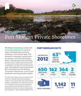 Living Shorelines project at Fort Morgan