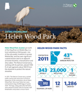 Living Shorelines project at Helen Wood Park