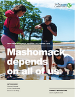 Mashomack Fall 2018 newsletter