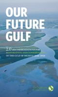 Our Future Gulf 2.0: Recommendations for restoration and conservation of the Gulf of Mexico (2021-2024).