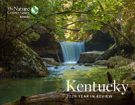 The Nature Conservancy's Kentucky chapter reports on conservation work accomplished in 2020.