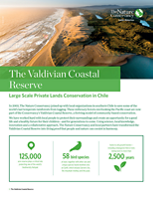 The Valdivian Coastal Reserve is living proof that people and nature can coexist in harmony.
