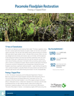The restoration of the Pocomoke floodplain is one of the largest ecological restoration efforts in Maryland's history.
