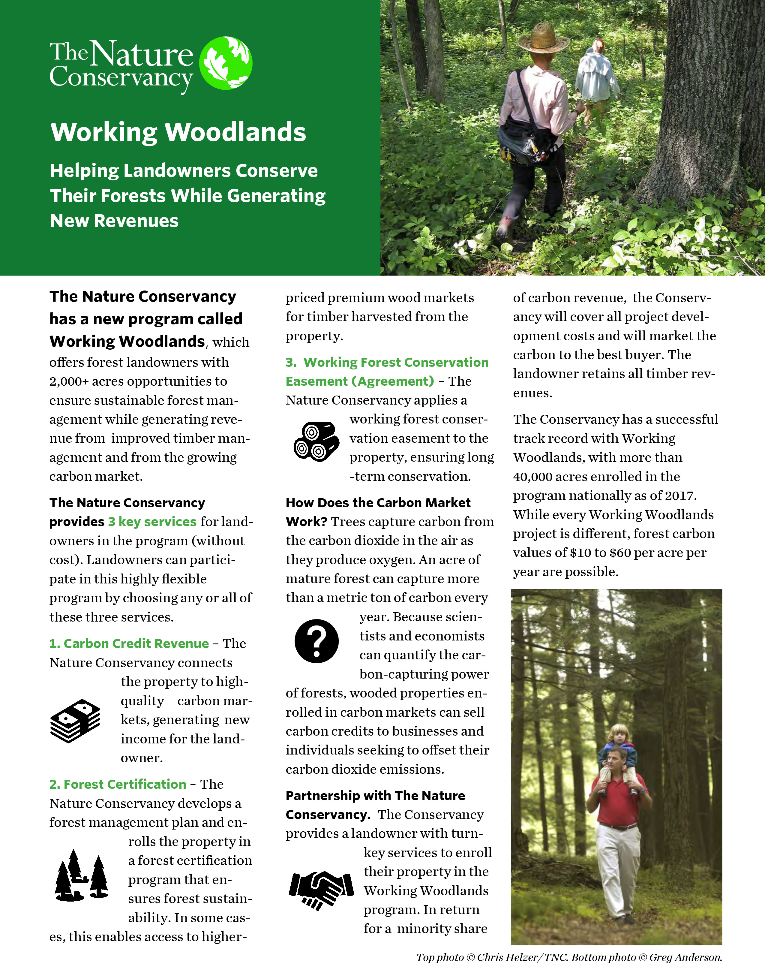 Brochure on our Working Woodlands program in Tennessee.
