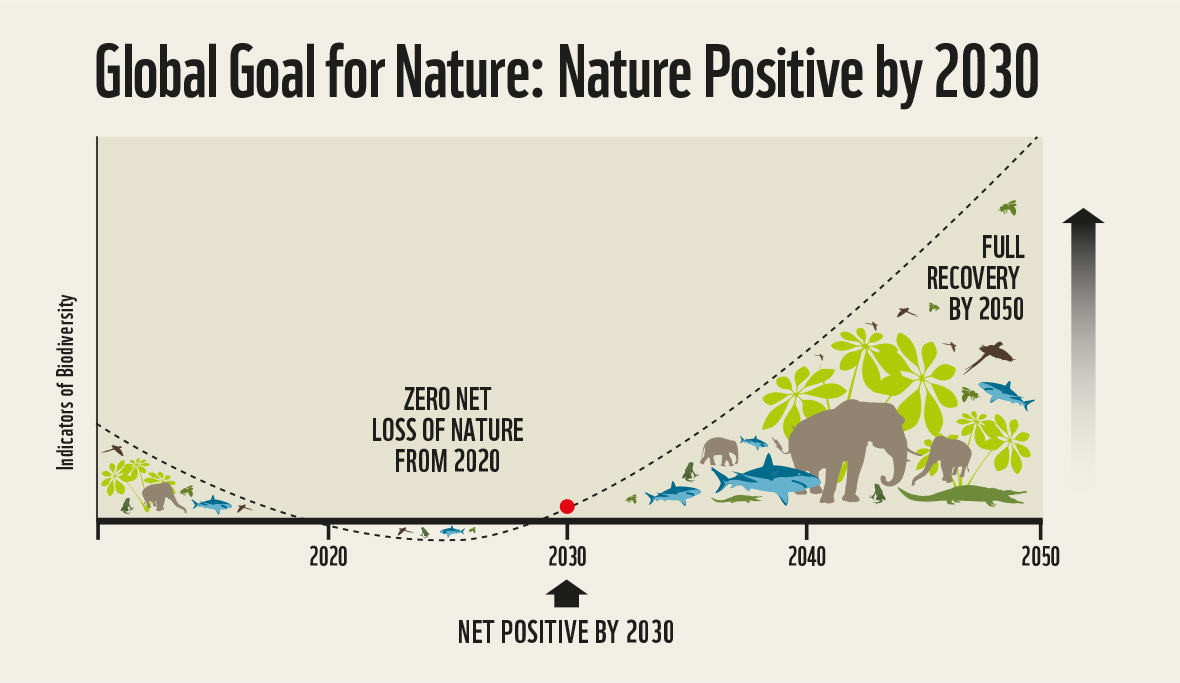 Nature Positive by 2030