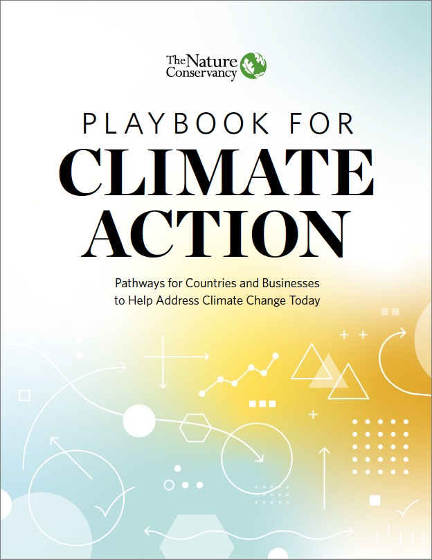Thumbnail of Playbook for Climate Action
