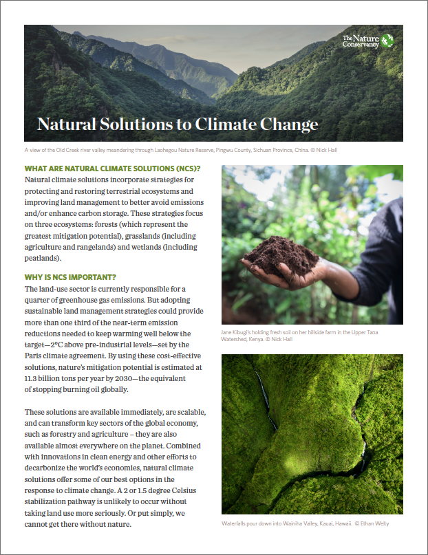 NCS incorporates strategies to better avoid emissions and/or enhance carbon storage.