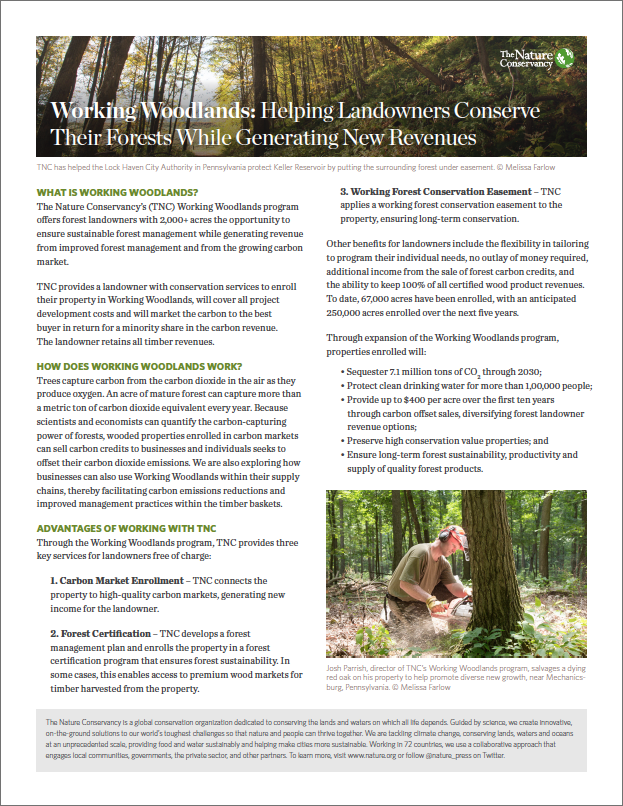 Helping Landowners Conserve Their Forests While Generating New Revenues