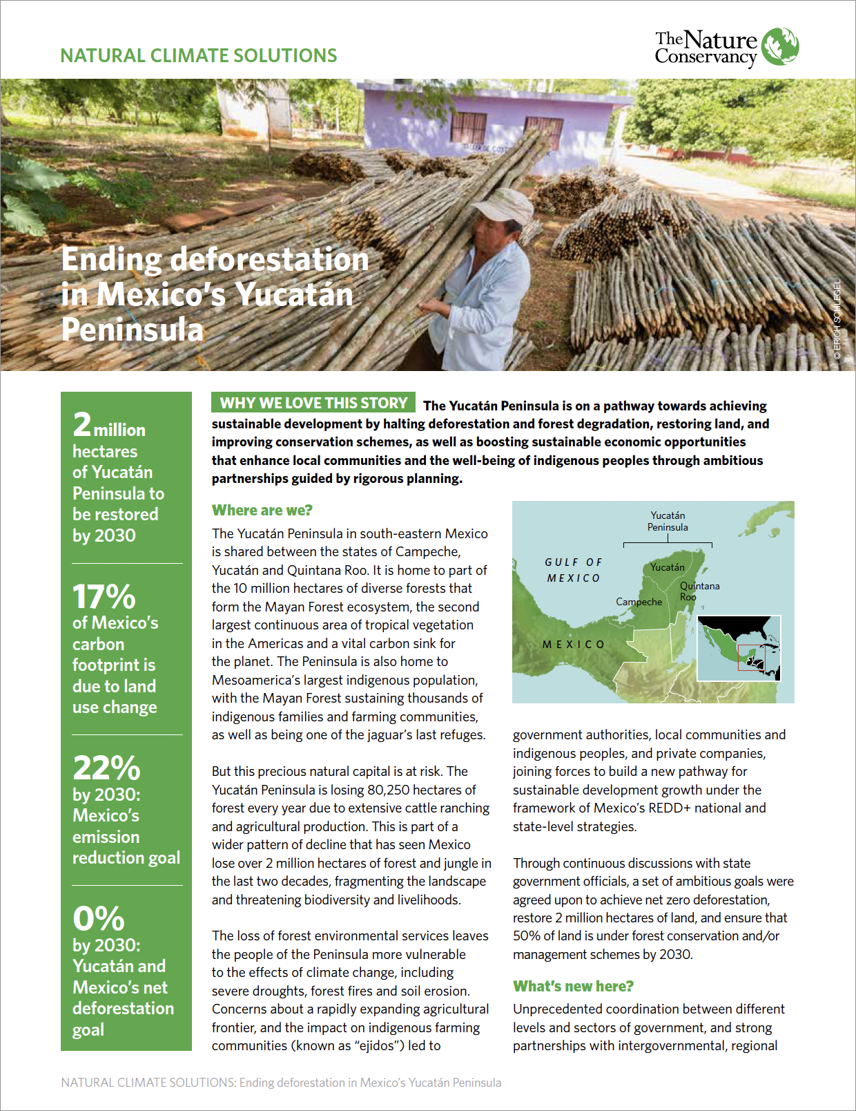 Natural Climate Solutions - Ending deforestation in Mexico's Yucatan Peninsula Case Study