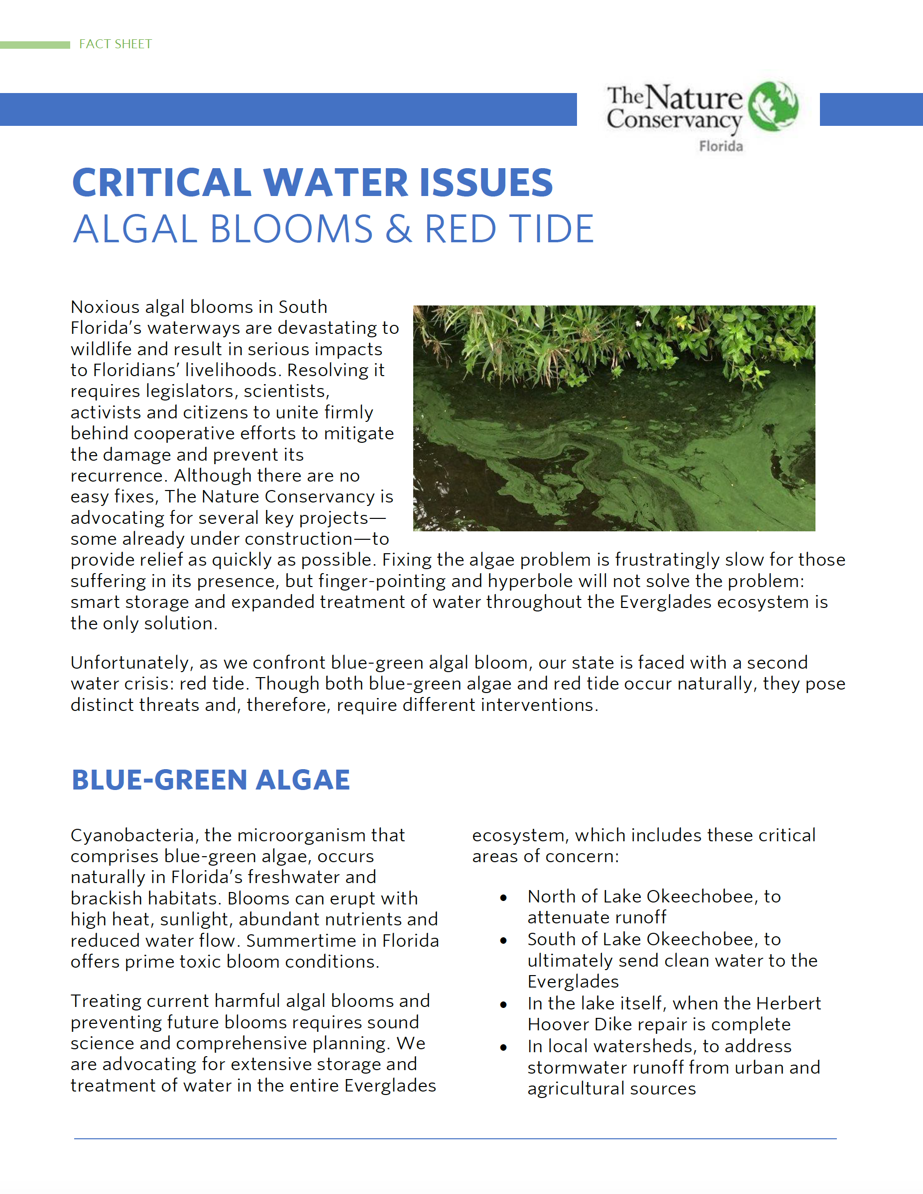 Algal Blooms and Red Tide Fact Sheet
