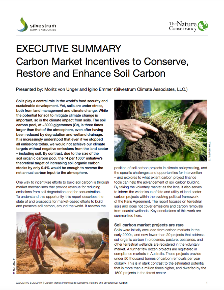 Carbon Market Incentives to Conserve, Restore and Enhance Soil Carbon - Executive Summary