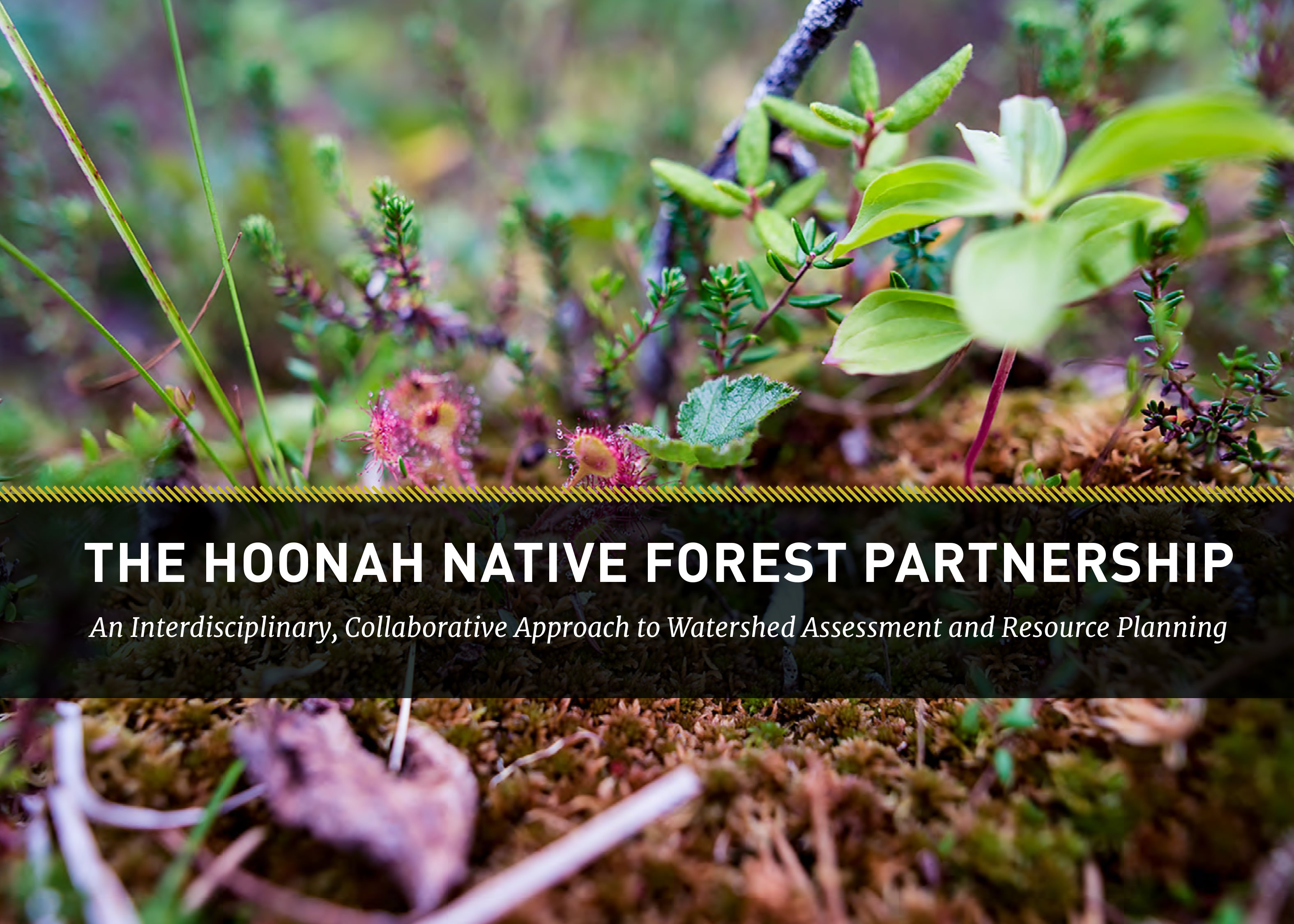 A comprehensive report from the Hoonah Native Forest Partnership.