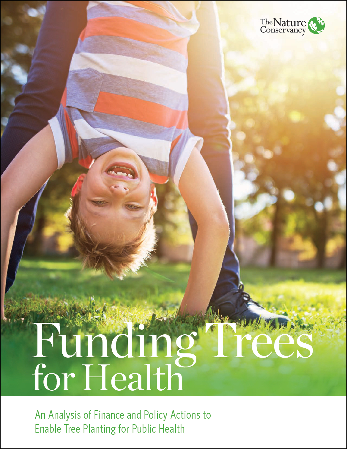 An Analysis of Fiance and Poolicy Actions to Enable Tree Planting for Public Health