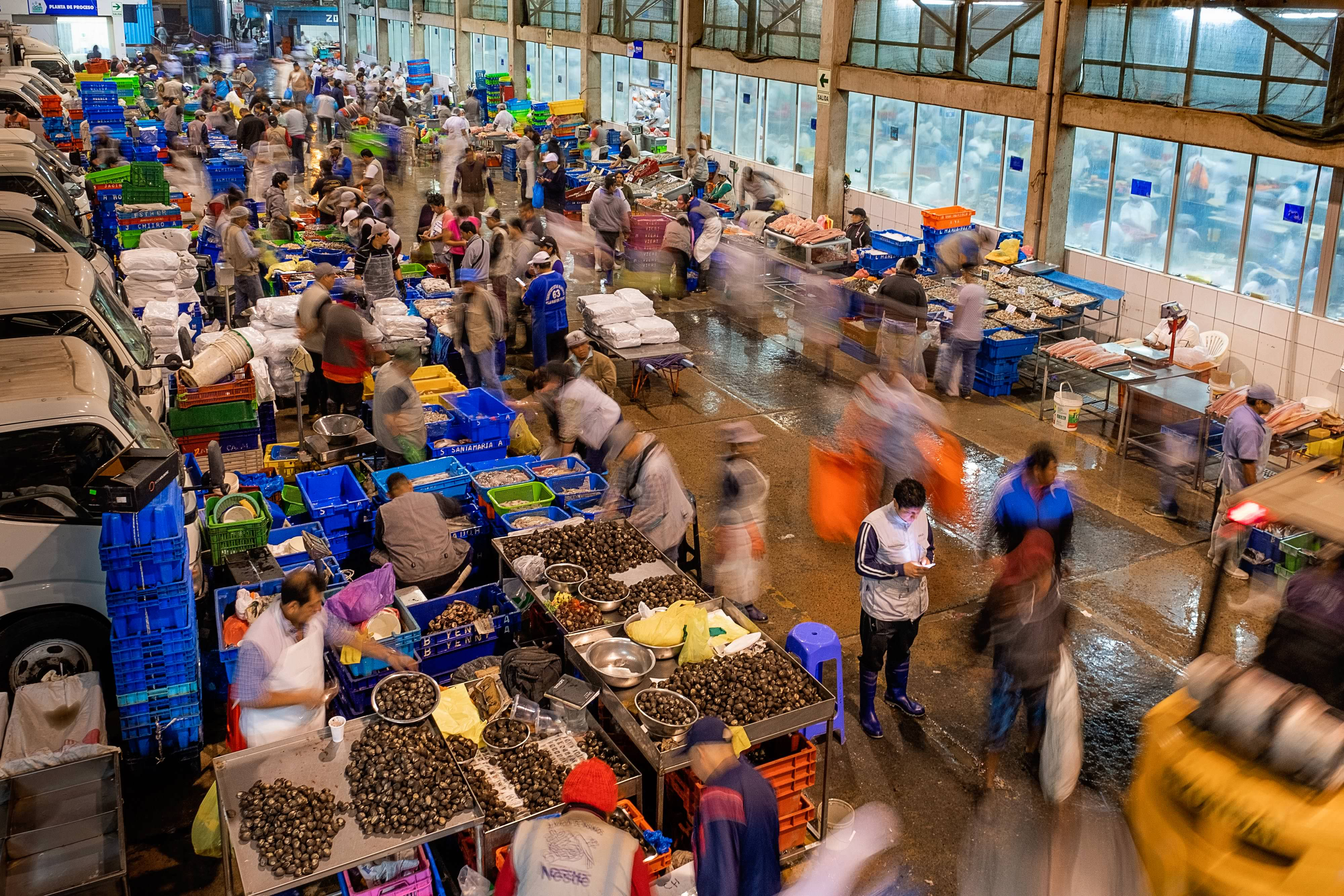 This is an example of a larger fish market in Lima, Peru.