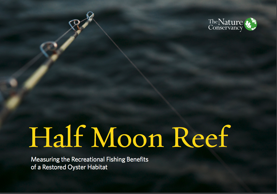 Cover of Half Moon Reef report
