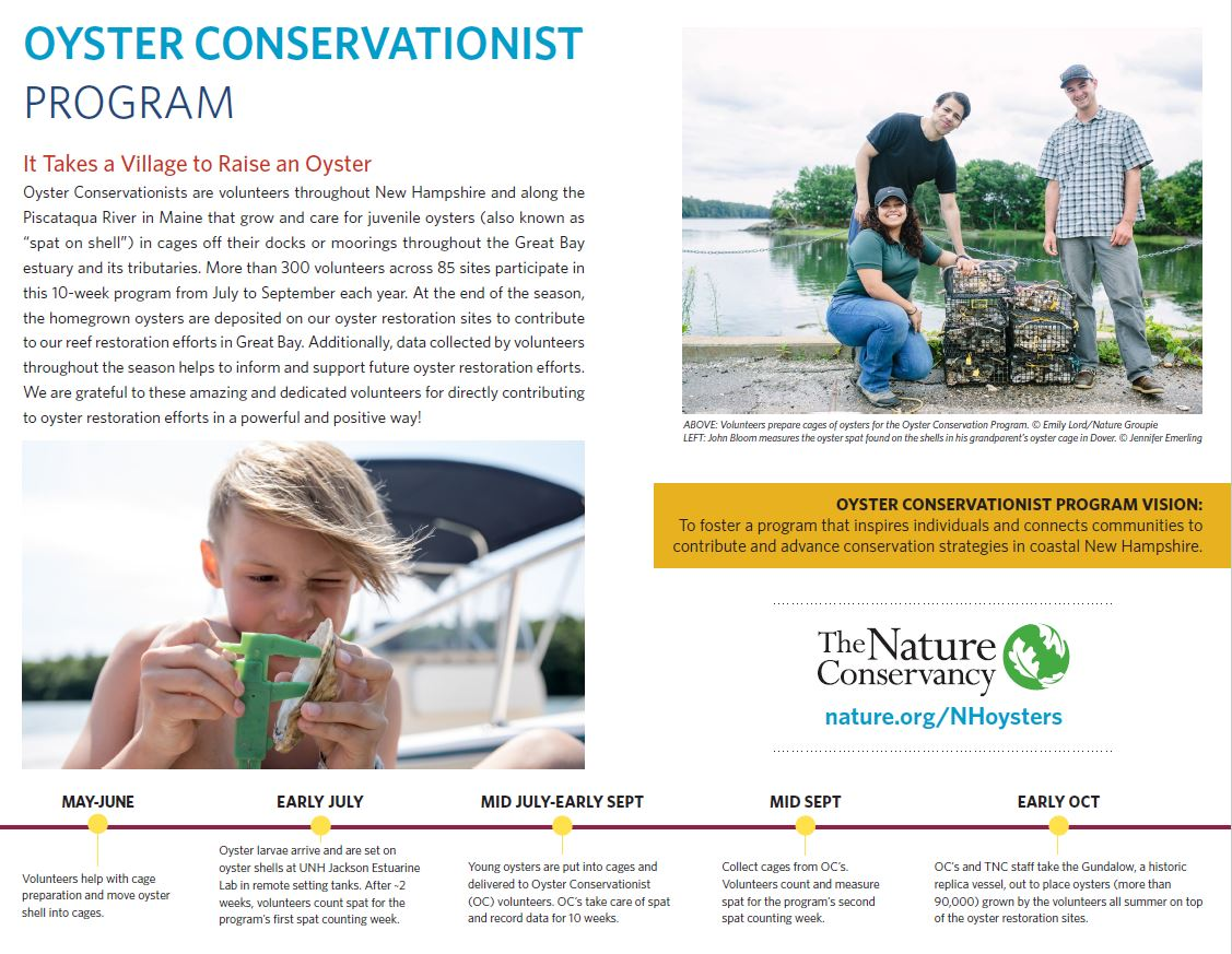 An overview of New Hampshire's Oyster Conservation Volunteer Program.