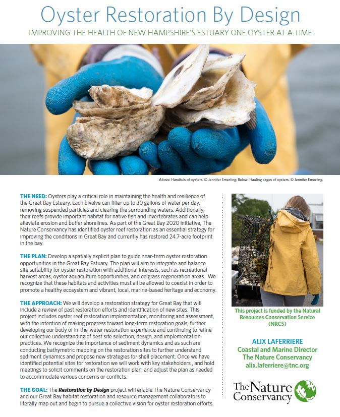 Fact sheet on New Hampshire's Oyster Restoration By Design initiative.