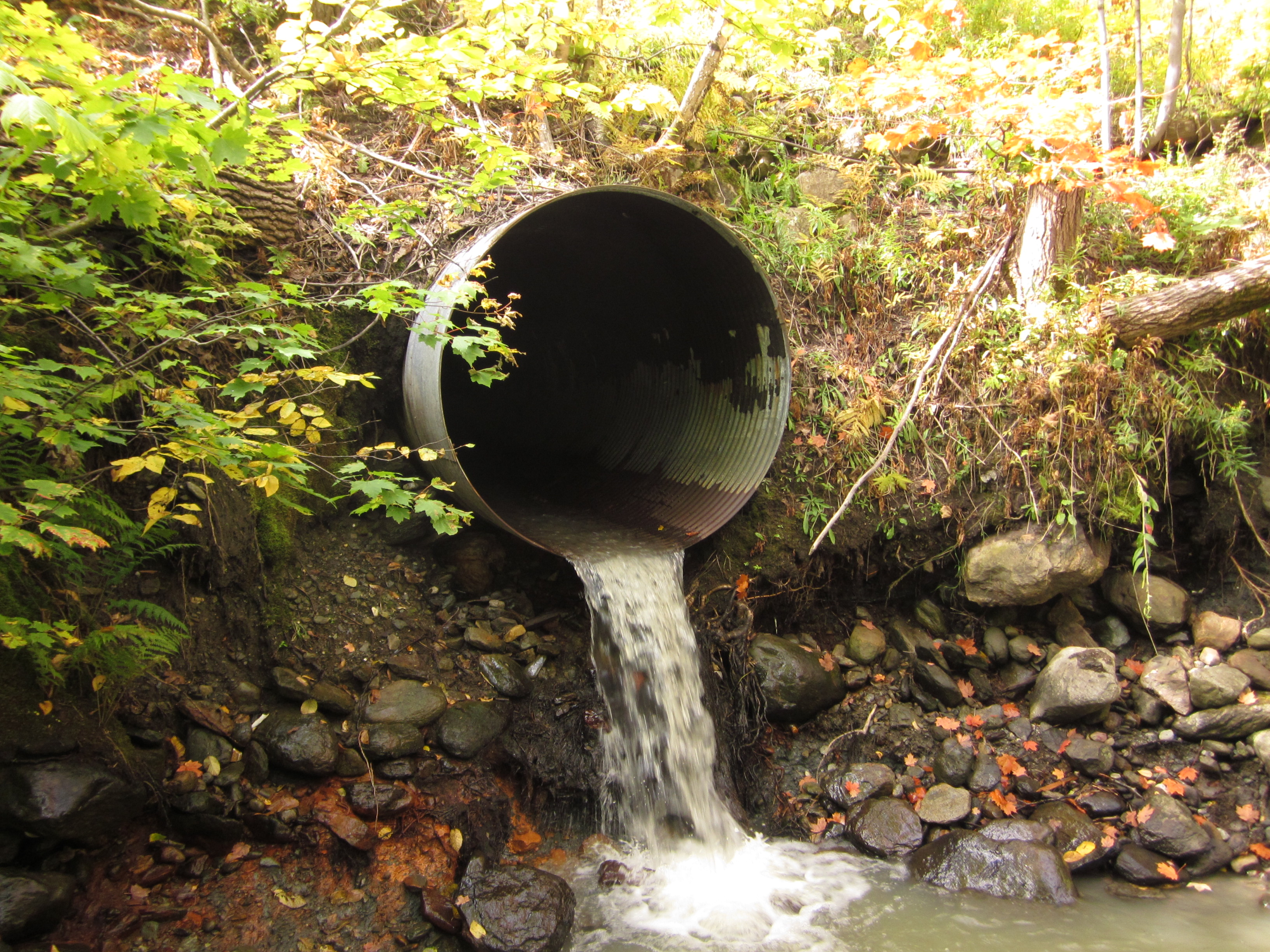 water pours out of a stormwater culvert above a stream.