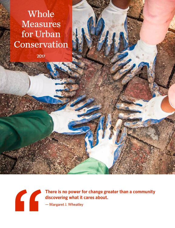 Whole Measures for Urban Conservation PDF